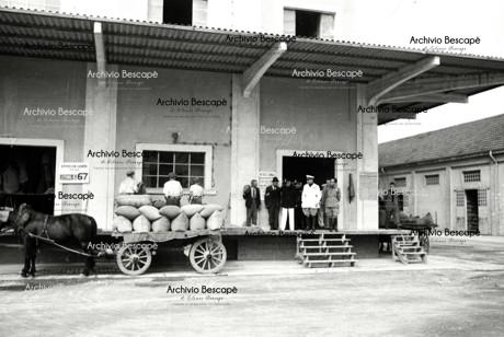 Lodi - Consorzio Agrario